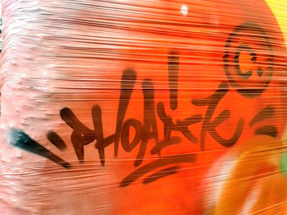 Graffiti Brevetage Du Vivant à Quimper