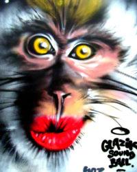 Glazik Soundball #4 à Briec (29)